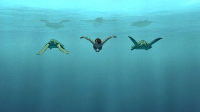 la-tortue-rouge01