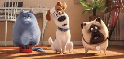 『ペット』の作風は、ディズニーやピクサーとどう異なる?イルミネーションが追求する娯楽性
